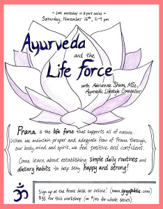 Ayurveda and the Life Force Workshop @ Yoga Public, Nov 2013